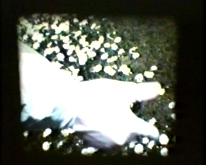 Brain-FILM-001